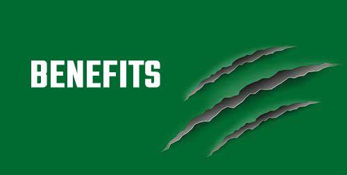 Benefits-Sponsoren