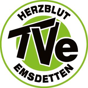 TV-Emsdetten_Logo_HKS-67K_vektor