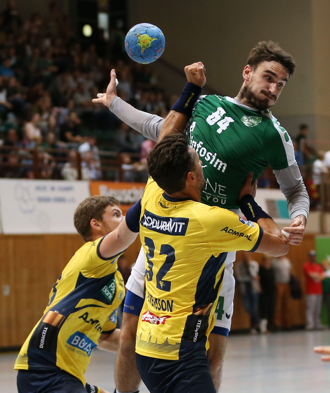 Testspiel, DJK Rimpar Wölfe – Rhein-Neckar Löwen